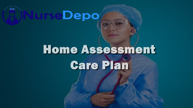 Home Assessment Care Plan